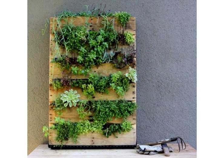 Jardines verticales como se hacen good cheap cmo hacer un for Como se hace un jardin vertical